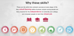 Skill-builder-skills-in-entrepreneurship-course-rio-de-janeiro-edumais